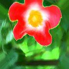 Flower by Dawn by Sean Corcoran by mutantspace