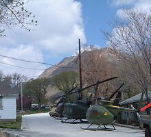 Cute Helicopters by WaleskaL