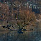 Newmillardam - Wakefield by Glen Allen