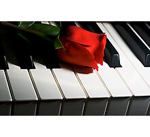 Keyboard romance Photographic Print