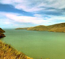 New Zealand lake by Aneurysm