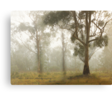 Wilberforce Morning Mist © Vicki Ferrari Canvas Print