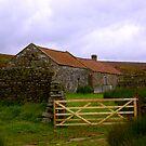 Old Barns by Trevor Kersley