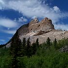 Crazy Horse by Mleahy