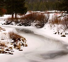 Frosted Creek by Carol Barona