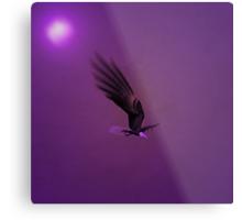 Once In A Purple Moon...... Metal Print