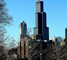 Sears Tower by DanaMS