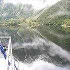 Reflections on Doubtful Sound by kbend