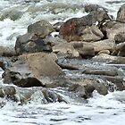 Rapid Water at Walyunga by Huey