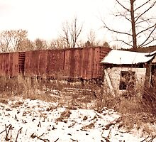Vintage Box Car Station by thewaterfallhunter