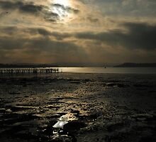 Poole Harbour - Fading Light by delros