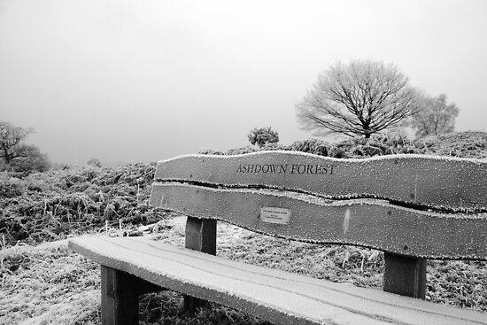 Frosty Bench by Tony Hadfield