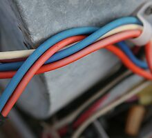 Red wire or Blue wire? by debsrockine