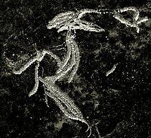 Blacktop Hieroglyph  #2 by Jerry Carpenter