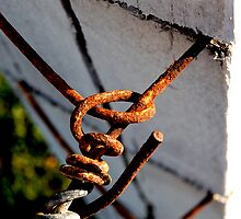 Rusty wire fence - Norah Head by Luke87