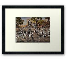 """""""Zebra Stallions"""" - Oil Painting Framed Print"""