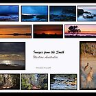 Images from the South by Danielle Knight