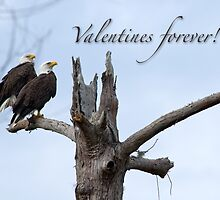 Valentines Forever! by Bonnie T.  Barry