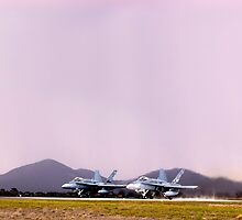 Hornets by Andrew Holford