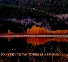 To Everything There Is A Season by Max DeBeeson