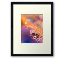 Supernova. Framed Print