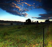 Up Before the Farmers - Theresa Park, NSW by Malcolm Katon