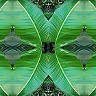 Big leaf shields by Marilyn Baldey
