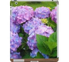 Beautiful Hydrangea Blossoms - Blue, Purple and Pink iPad Case/Skin