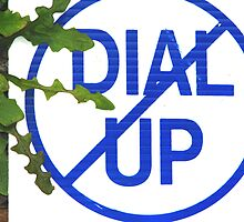No Dial Up  by Dan Casey Campbell