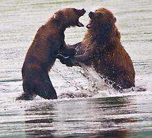 Salmon Turf Wars on Kodiak by Albert Dickson