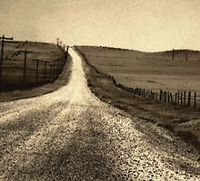 The Long Road Home by RC deWinter