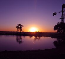 Purple sunset and windmill. Winton. Qld. Australia by Marilyn Baldey