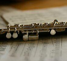 Music to my Ears by Pamela Jayne Smith