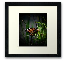 Just remember who you are, you can be a lucky star..Take your chances while you can..Take your own life in your hands..And you can start it all again..Be everything you wanna be Framed Print