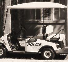 Police  by Donna Adamski