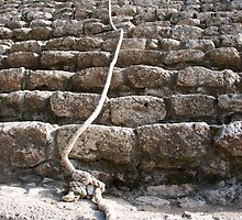steps of the maya by dinghysailor1