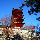 Miyajima 5 Tier Pagoda by Luke McLaughlan