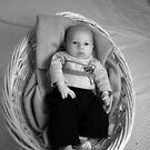 A Basket Full by Anthony Pierce