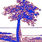 Town Beach Boab Tree- purple and red by Nada  Pantle