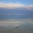 A ripple on the lagoon - Palm Grove Beach by Johnso83