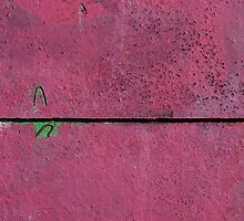 Aubergine by pusztafia