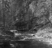 Oak Creek, Arizona (B&W) by Kenneth Mead