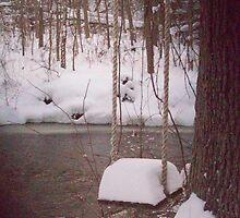 Got Snow ???  by Michelle BarlondSmith