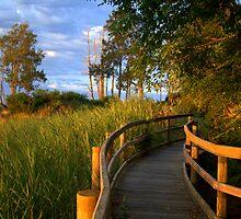 Manning River Sundown by picketty
