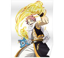 Fairy Tail Natsu and Happy Poster