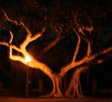 Tree of Hearts by Shinrai