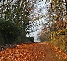 Church Lane, Harewood 3 by WatscapePhoto