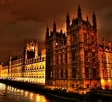 Palace of Westminster by Roddy Atkinson
