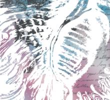Haeckel's Seashell Elaborated Sticker