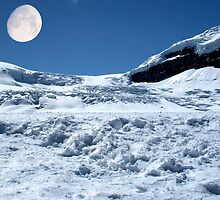 Moonshine on the Columbia Icefields, Alberta. Canada. by AnnDixon